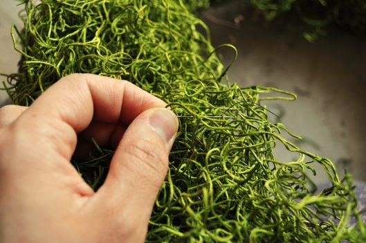 weaving needle through moss